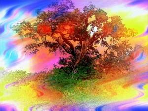 trees-83487_640