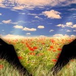 Erfüllte Beziehungen – nur ein Traum?